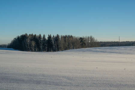 swept: winter landscape. Sunny day. Winter decline. The bright colors. Simple landscape. Winter forest.  forest road. winter fild.