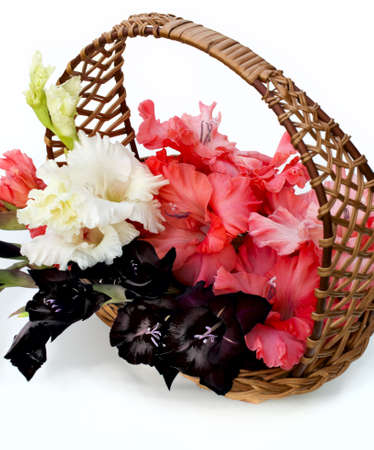 beautiful gladiolus are in a wicker basket photo