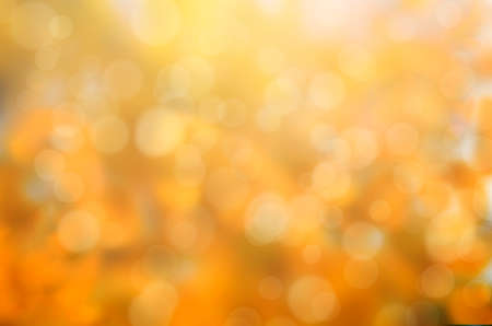 leaf fall abstract background with sun beams and flares 版權商用圖片