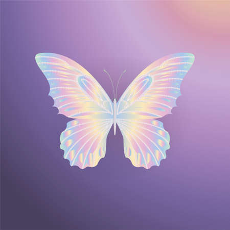 nacre: pearl Lace butterfly on purple background.  Vector illustration.