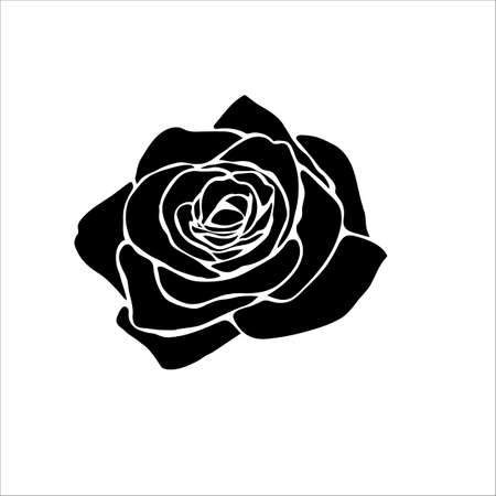 silhouette of rose isolated on white background