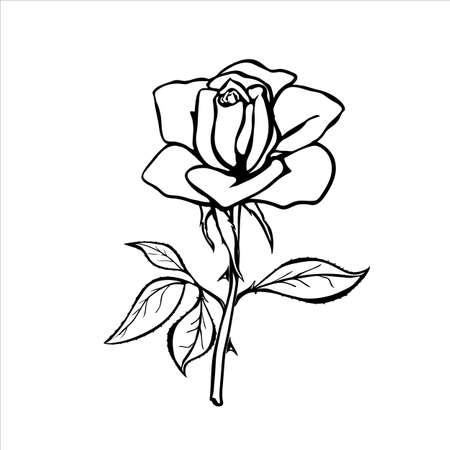 love rose: silueta de rosa Vectores