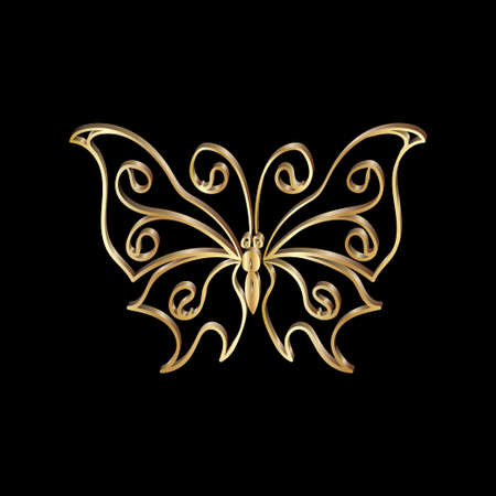 gold lace: Gold Lace butterfly on black background.  Vector illustration.