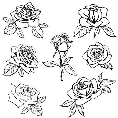 rosa negra: Establecer boceto Rose. Contorno negro sobre fondo blanco. Ilustración del vector.