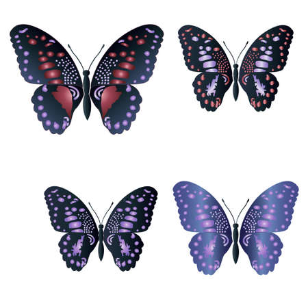 white background'abstract: Butterfly set on white background. Abstract design. Vector illustration.