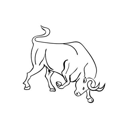 Sketch  bull on  white background. Vector illustration Vector