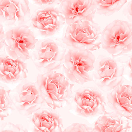 roses background: Pink roses seamless pattern