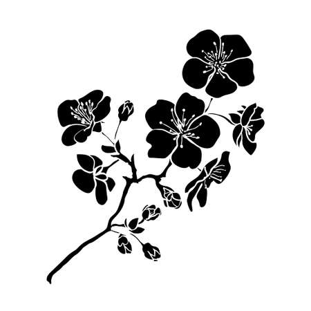 blossom tree: twig sakura blossoms. Vector illustration. Black outline