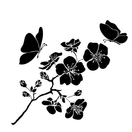 black butterfly: twig sakura blossoms. Vector illustration. Black outline