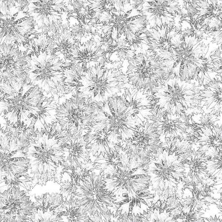 seamless pattern. bouquet of cornflowers photo