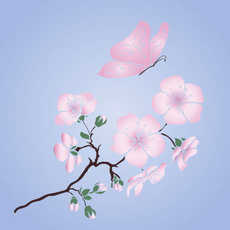 twig sakura blossoms and pink butterfly Vectores