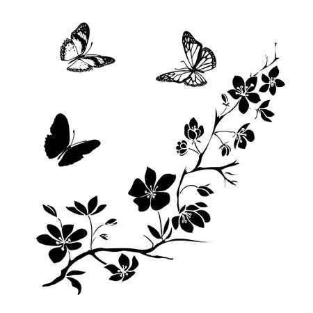black and white image drawing: twig sakura blossoms and butterflies. Vector illustration