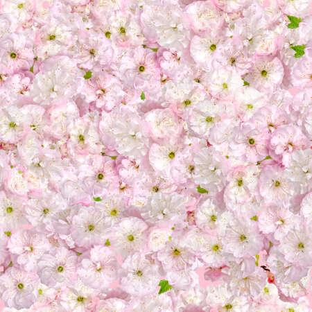 Pink almonds seamless pattern