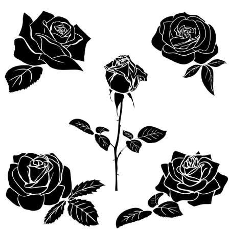 silhouette of rose isolated on white background. Vector illustration. 版權商用圖片 - 38633221