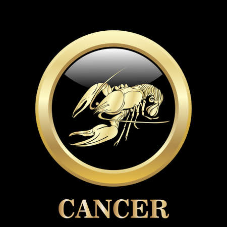 cancer zodiac: Cancer zodiac sign in oval frame, vector Illustration.  Contour icon.