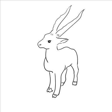 Vector stylized figure of a goat.  Sketch Vector Illustration Vector