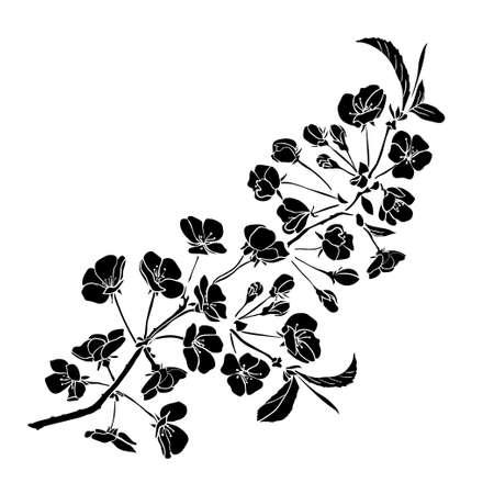 나뭇 가지 벚꽃