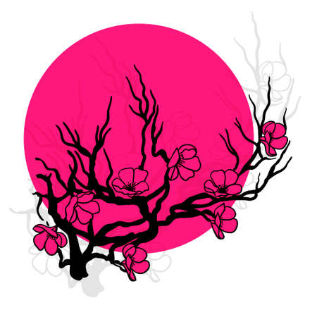 spring in japan: twig sakura blossoms. Vector illustration. Black outline