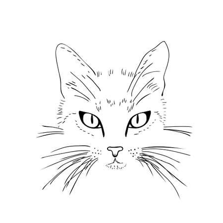 silueta de gato: La cara del gato. Blanco y negro del bosquejo. Ilustración vectorial Vectores