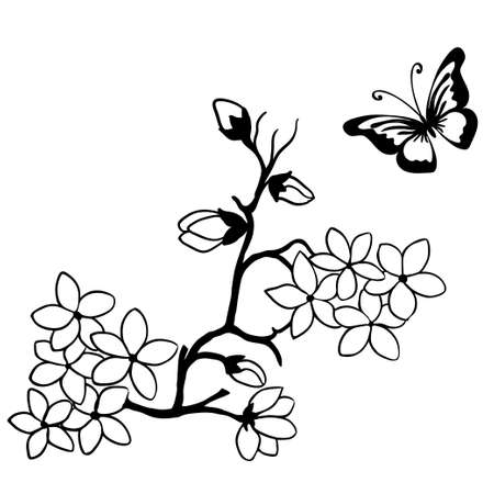twig cherry blossoms and butterflies Illustration