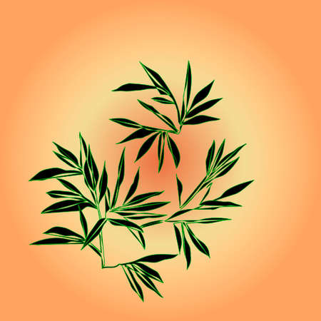 treelike: Bamboo branches are on sunlight background. Vector illustration