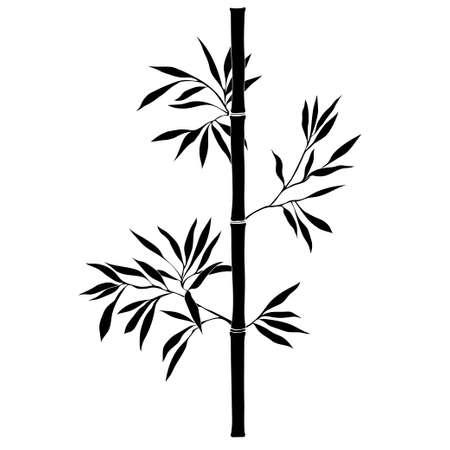 대나무 분기 흰색 배경에 고립입니다. 검은 실루엣.
