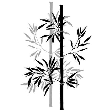대나무 분기 흰색 배경에 고립. 검은 실루엣.