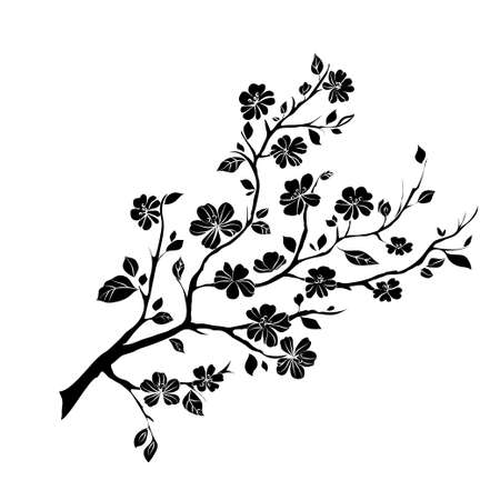 black and white image drawing: twig sakura blossoms. Vector illustration. Black Silhouette