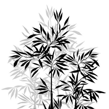 japones bambu: La parte superior del bambú. Bambú hoja de antecedentes. Ilustración vectorial