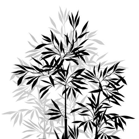 isolated on grey: The top of the bamboo. Bamboo leaf background.  Vector illustration