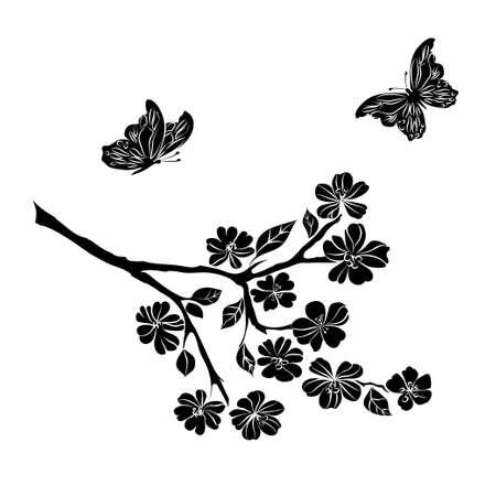 sakura flowers: twig sakura blossoms and butterflies. Vector illustration