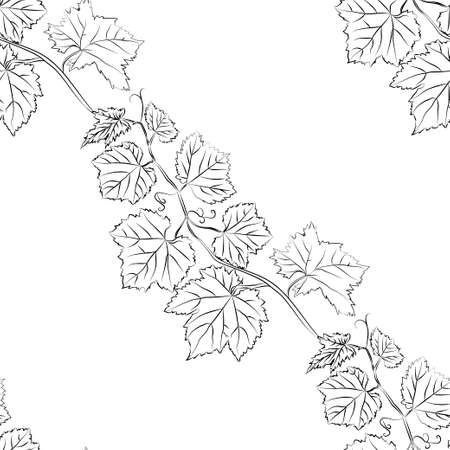 Leaf seamless pattern. Floral seamless texture with grape. Vector illustration