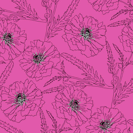 papaver: Terry poppy are on pink background. Vector illustration. Floral seamless texture.