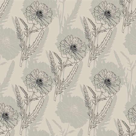 opium poppy: Terry poppy. Vector illustration. Floral seamless texture. Illustration