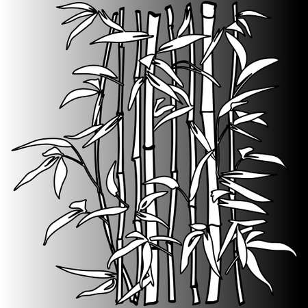 leaf background: The top of the bamboo. Bamboo leaf background.  Vector illustration