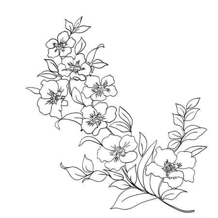 Ramita flores de sakura. ilustración. Contorno negro Foto de archivo - 44257158