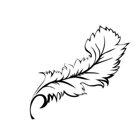 Decorative Feather. Black outline are on a white background. Vector illustration