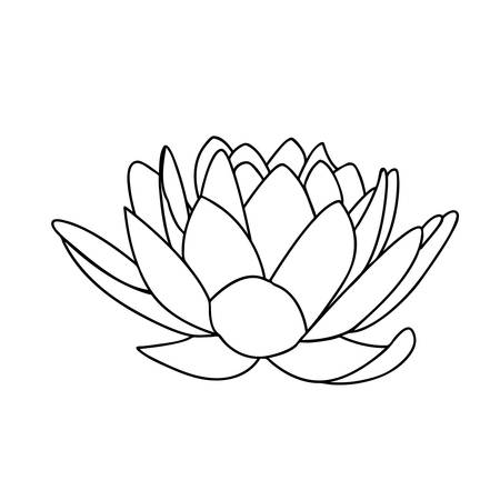 Lotus flowers icon the black line drawn on a white background lotus flowers icon the black line drawn on a white background stock vector 46642032 mightylinksfo