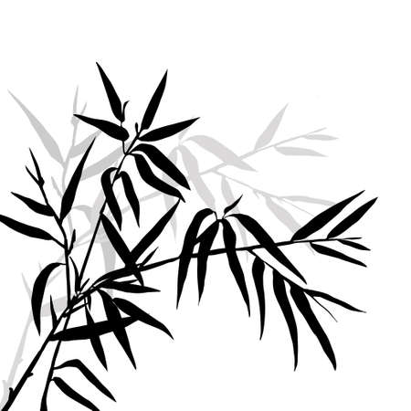 trees silhouette: The top of the bamboo. Bamboo leaf background.  Vector illustration