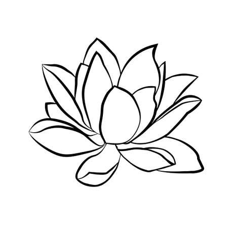 flor de loto: Lotus icono de flores. La l�nea de negro dibujado sobre un fondo blanco Vectores