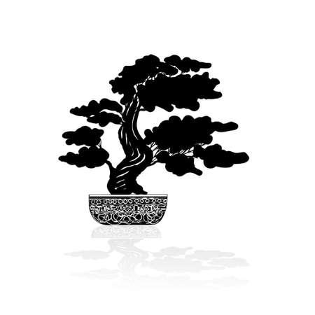 Bonsai silhouette over a white background. Vector illustration