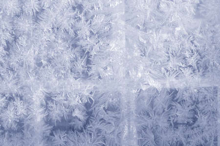 frosted glass: Frosted glass. Ice patterns on winter glass