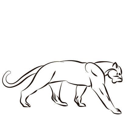 Vector illustratie met tijger silhouet op een witte achtergrond