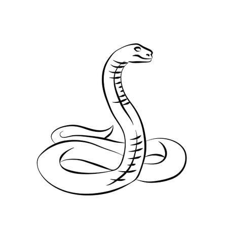 snake charmer: Vector illustration. Black snake on white background. Sketch
