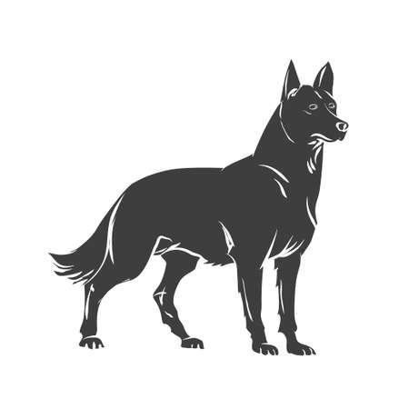 black and white image drawing: Vector image of an dog  on white background