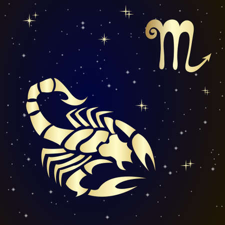 Scorpio zodiac sign in  starry  sky, vector Illustration. Contour icon. 矢量图像