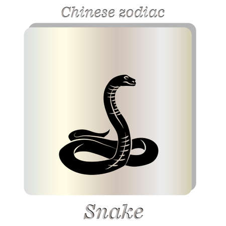 snake charmer: Vector illustration. Black snake on pearl background. Illustration