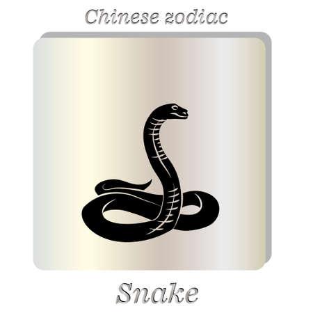 adder: Vector illustration. Black snake on pearl background. Illustration