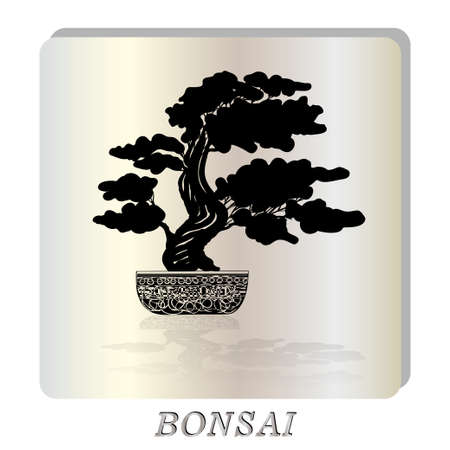 nacre: Bonsai silhouette over a pearl background. Vector illustration