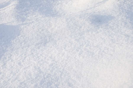 fluffy: fluffy snow closeup outdoors
